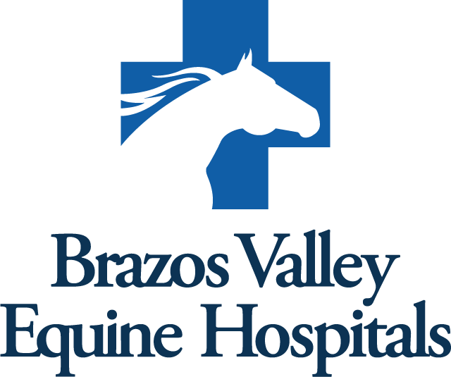 Blue Valley Equine Hospital